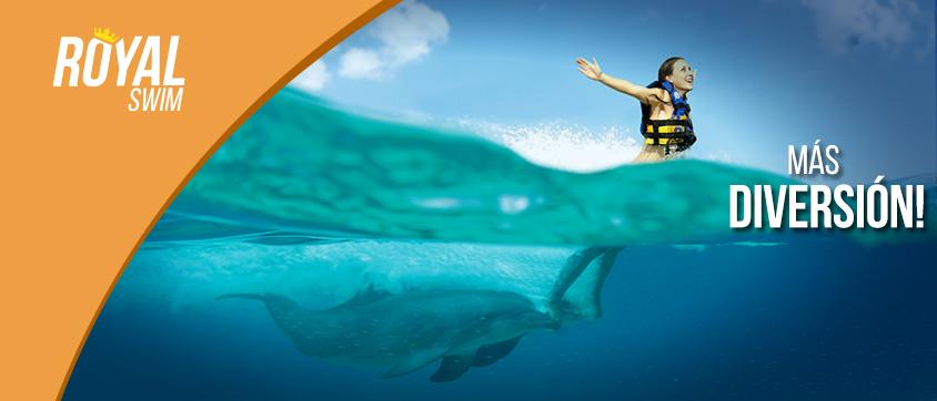 visite et excursion nagez avec les dauphins