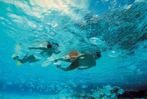 plongée avec masque et tuba sur isla mujeres
