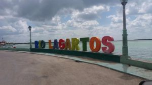 visite de rio lagartos et las coloradas de playa del carmen
