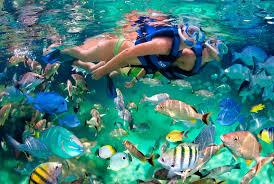 Top 5 des choses à faire avec des enfants à Playa Del Carmen